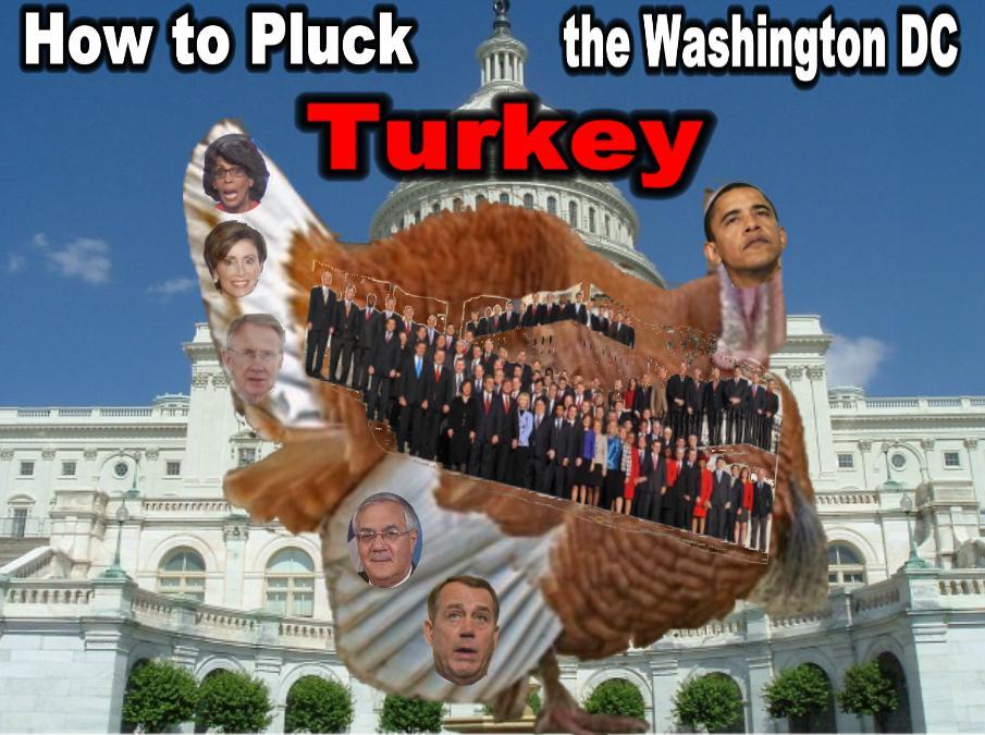 Turkey DC