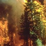 Western Wildfires – Horrific, Devastating … and Unnecessary