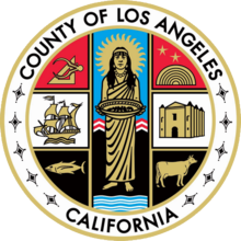 Citizen Seeks Grand Jury to Investigate Head of Los Angeles Child Protective Service Agency