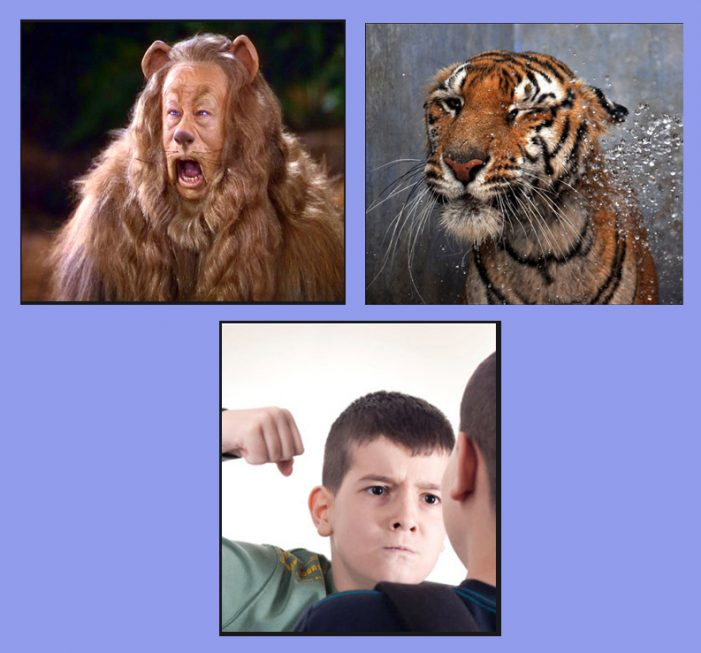 Cowardly Lions, Toothless Tigers, Schoolyard Bullies and RINOs