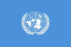 UN is After Our Kids – Again!