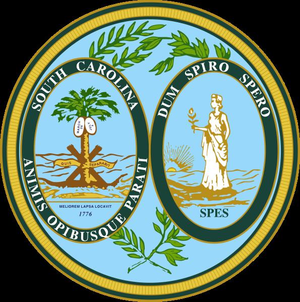 South Carolina May Nullify Obamacare
