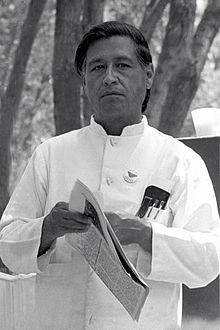 Lettuce Forget Chavez