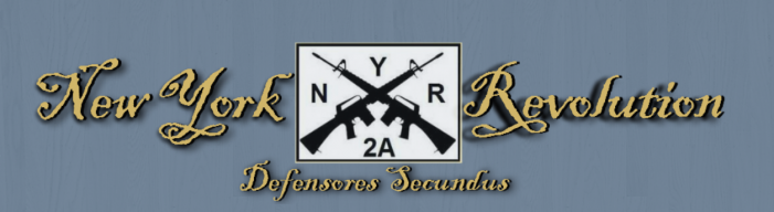 SAFE Act Forum to Take Place February 8 in Delhi, NY