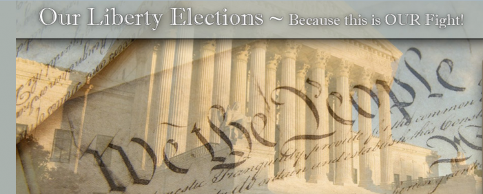 New Website Points to Constitutional Candidates