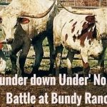 """""""The THUNDER Down UNDER"""" in the Battle at Bundy Ranch – No Bull!"""