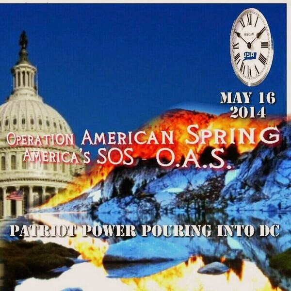 Courage Pouring into DC Operation American Spring – OAS – A Few Good Men?