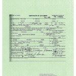 Obama Birth Certificate Forgery Creeps into the Mainstream Media