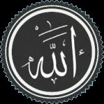 """Why We Are Afraid"" of Islam pb"
