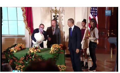 Obama Wins Ringside Politics Turkey of the Year Award