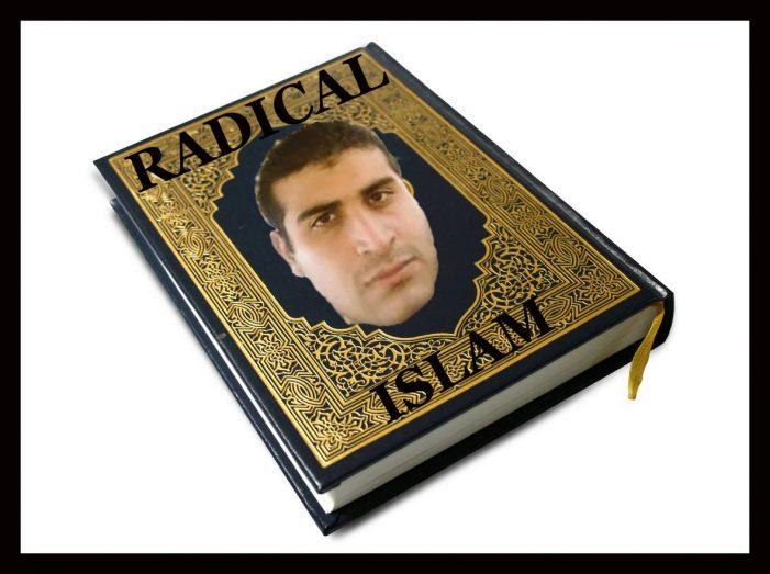 Not Radical Islamist – Radical Islam