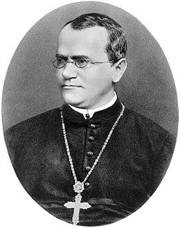 Professor Zorkophsky Again (RR)
