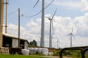America Blighted by Industrial Wind