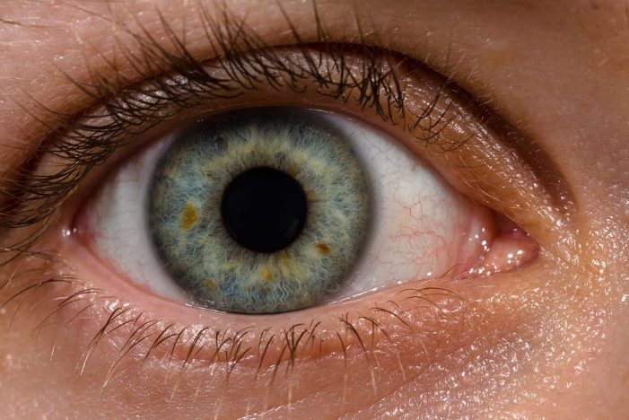 Why the Modern World is Waging War on our Eyesight