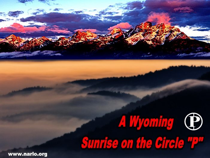 In Wyoming They Despise Politicians at the Circle P