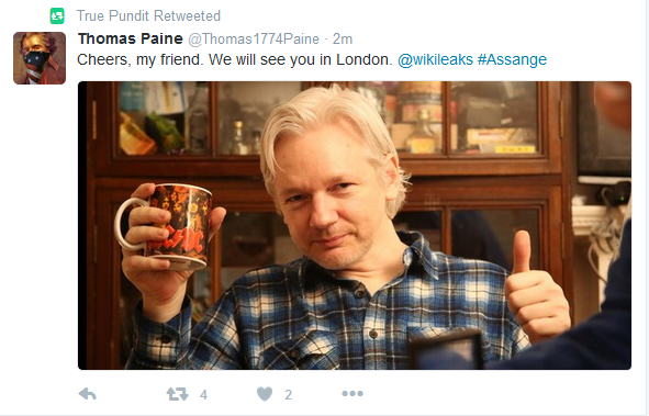 Is There a Connection Between TruePundit and Julian Assange?