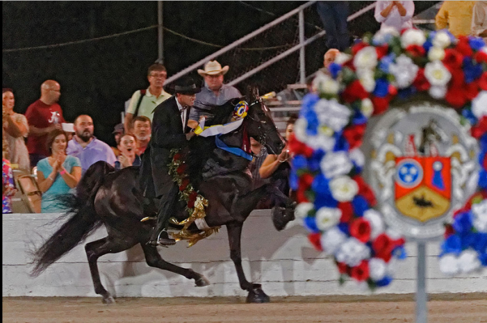 Does Tennessee Really Oppose the Soring of Horses?