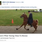 Video About Horse Abuse Receives Three Million Views in Three Days