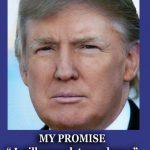 Trust in Trump