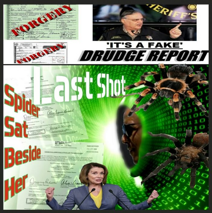 The Spider That Sat Down Beside Her – Rep. Nancy Pelosi's in Deep in the Obama Ineligibility Cover-Up Web