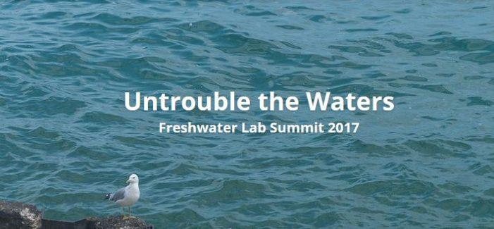 Refocusing a Chicago Water Summit