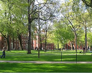 Harvard Recorded Its Highest Admission Yield Since 1969