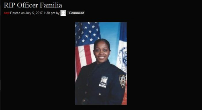 Pro-Police Movement Calls for National Demonstration over Killing of NYPD Officer