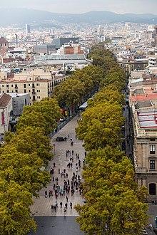 14 Killed in Terrorist Attacks in Spain