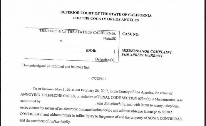 "Los Angeles Mother to Face Trial for Allegedly Sending ""Annoying"" and ""Threatening"" Communications"