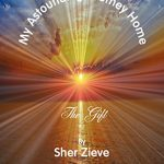 """The Post & Email Interviews Sher Zieve, Author of """"My Astounding Journey Home"""""""