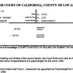 Los Angeles Mother Alleges Bias, Misconduct by Family Court Commissioner, Part 3