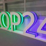 CFACT's Saturation Bombing of COP 24