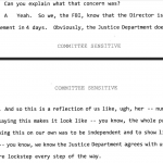 """Lisa Page Transcript:  FBI and DOJ """"Worked in Tandem"""" on Clinton Email Investigation"""