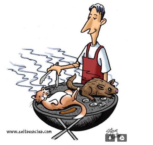 Chuck another Possum on the Barbie?