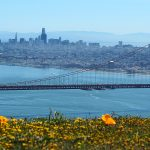 What San Francisco is Doing is Criminal