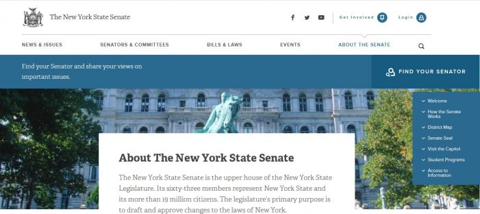 New York State Senate Lands on Presidential Eligibility Article