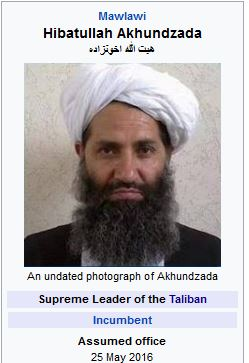 How Stupid Do You Have to Be to Talk with the Taliban? (RR)