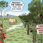 Aussie Bushfires Nurtured in National Parks