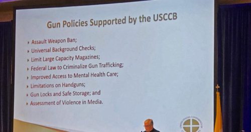 U.S. Catholic Bishops Push for Legislation to Restrict Gun Rights