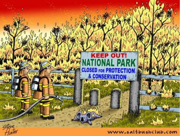 Put Foresters Back in the Forests