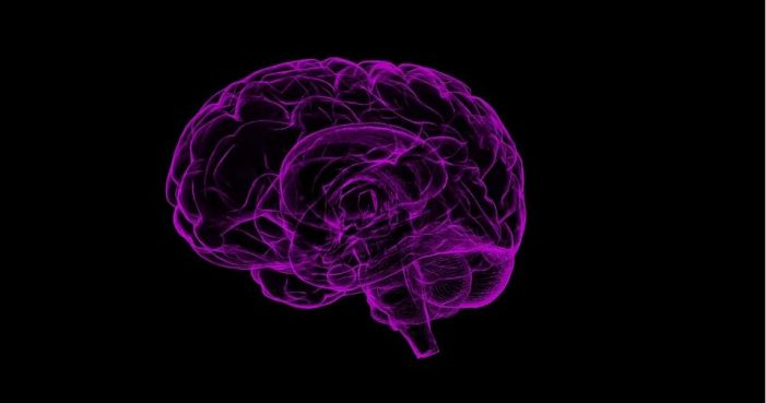 What Brain Areas Does CBD Affect to Reduce Psychosis?