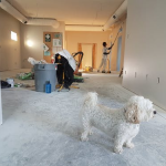Social Distancing: How is Coronavirus Impacting Home Renovations in 2020?