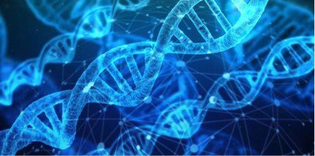 DNA-pixabay-450x223.jpg