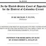 Flynn Judge Asks Full Appeals Court to Rehear Mandamus Decision