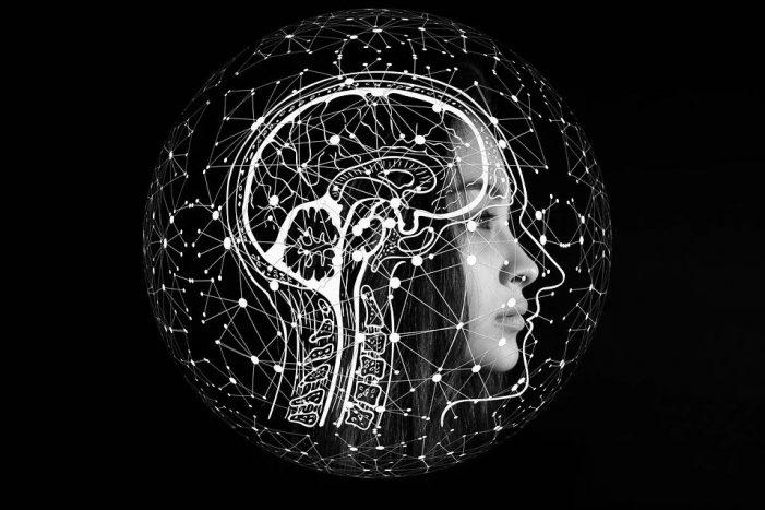 Professor Wert Scans a Left's Brain (RR)