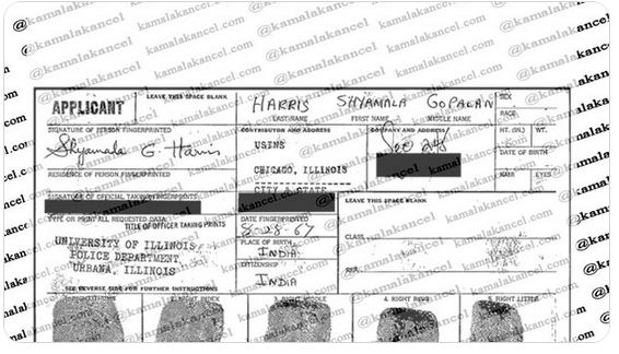 "More ""Deportation Docket"" Documents on Kamala Harris's Mother Released by Mysterious Twitter Account"