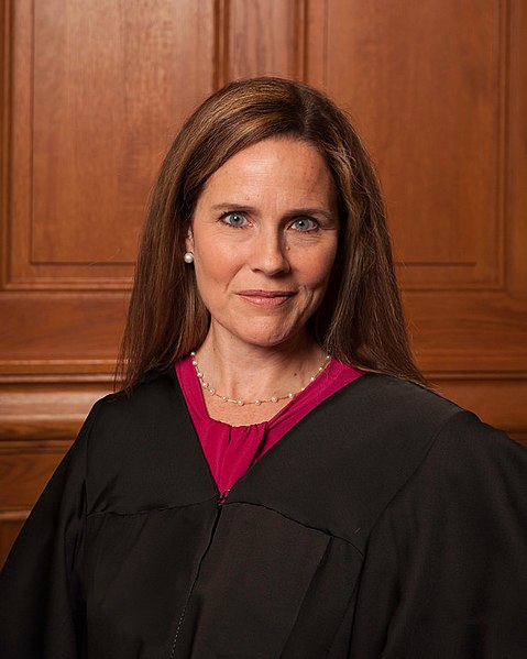 """The """"Hearings"""" and Amy Coney Barrett's Amazing Brilliance"""