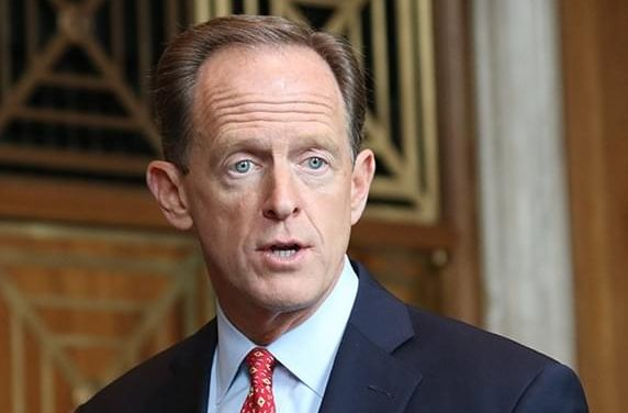 "U.S. Senator Claims ""Birthright Citizenship"" Renders Harris Eligible"